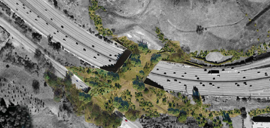 The Guardian | Los Angeles to build world's largest wildlife bridge across 10-lane freeway