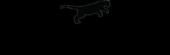 save la cougars shop logo